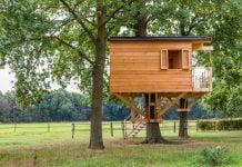 Co warto wiedzieć o budowie domku na drzewie?