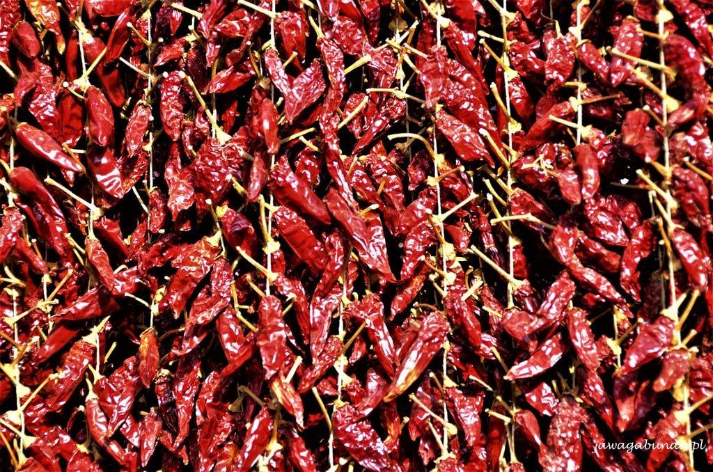 papryczka Kalabria