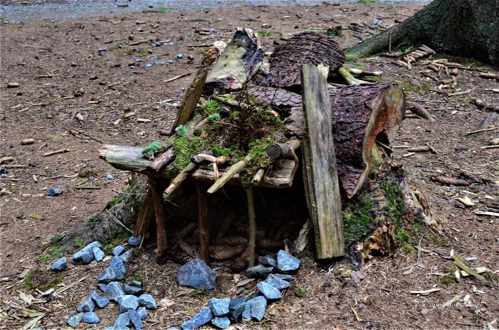 zbudowany z szyszek i patyków domek mały