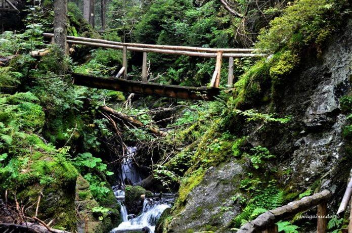 drewniany most nad górskim potokiem