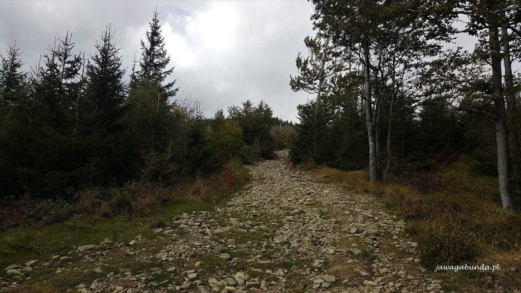 kamienie na trasie z góry Skrzyczne