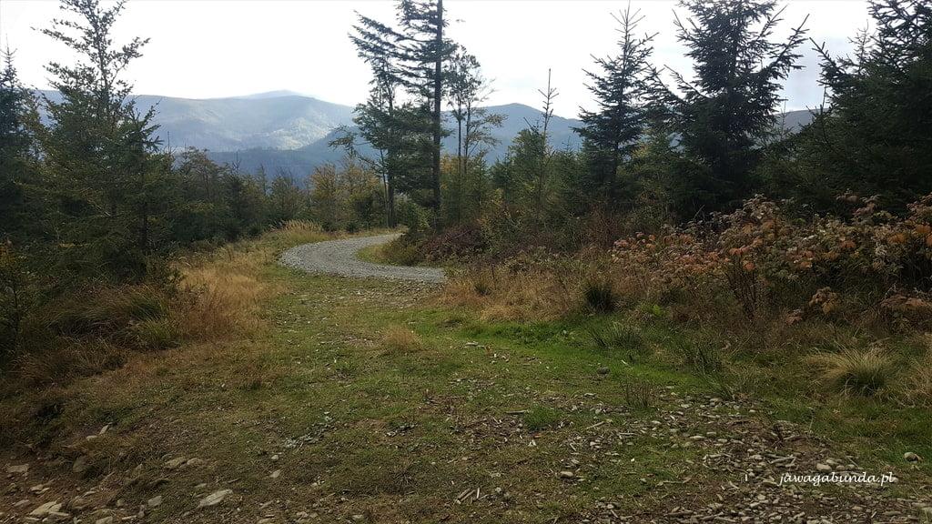 droga dojazdowa w górach na Skrzyczne