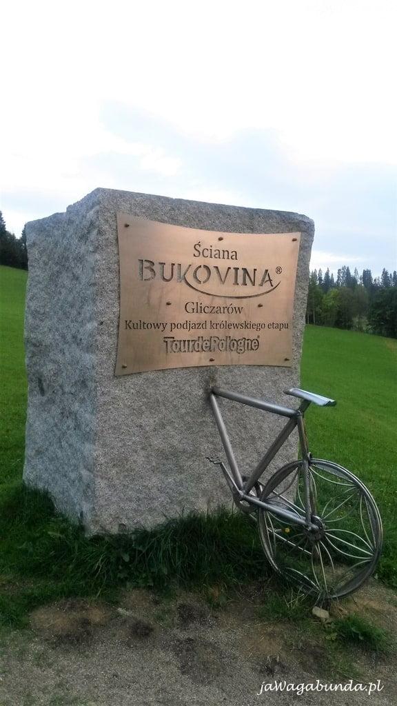 pomnik rowerzysty