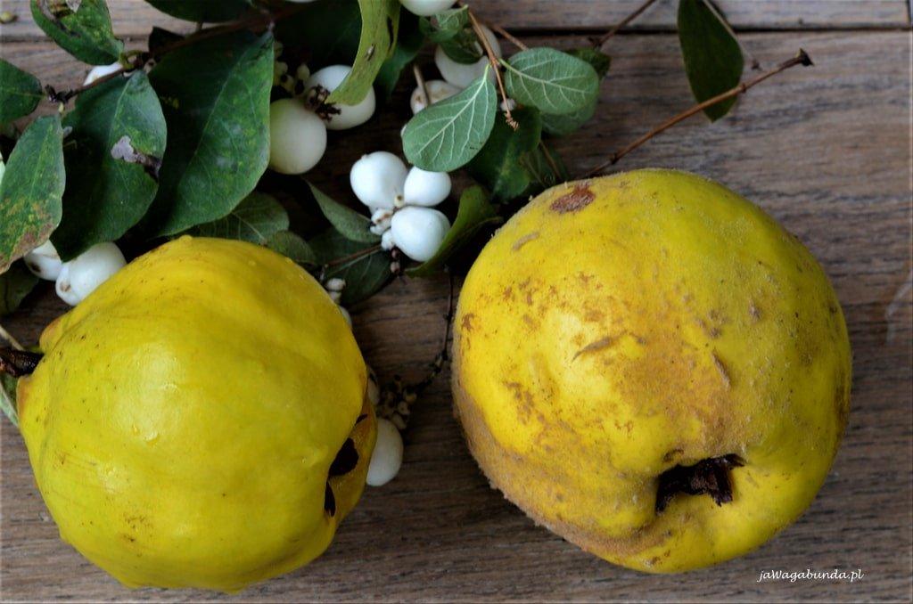 Przygotowując pigwówkę należy pamiętać aby dokładnie oczyścić owoc. Po lewej oczyszczona pigwa a po prawej z nalotem