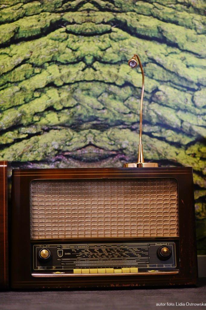 """Pokój """"Ptasie radio"""" w Pałacu Pakosław"""