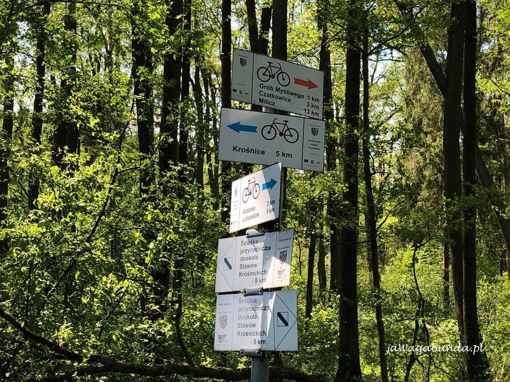 oznaczenia trasy rowerowej Stawy Milickie