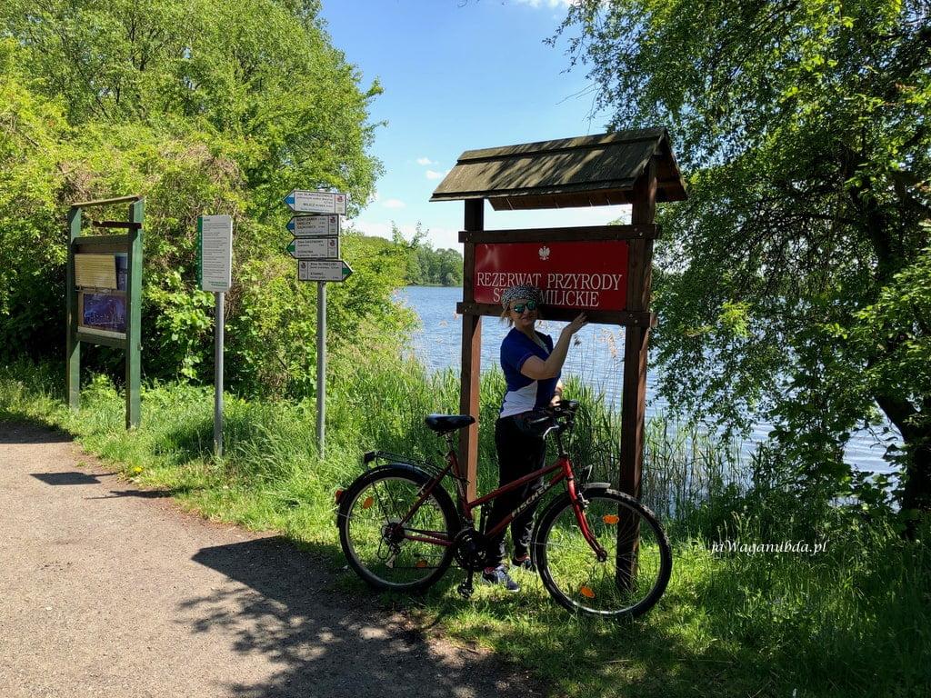 Stawy Milickie i rower