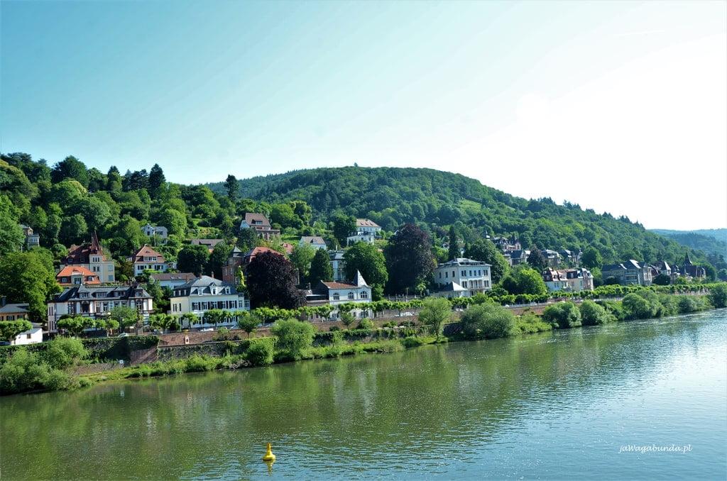 zabudowania nad Neckarem w Heidelbergu