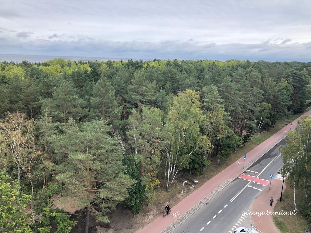 Trasa rowerowa w mieście