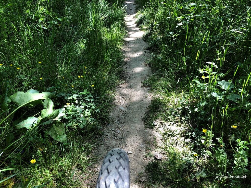 ścieżka Single Track w Górach Kaczawskich