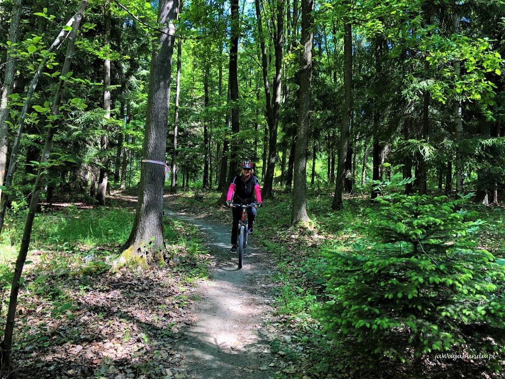 jazda terenowa w lesie