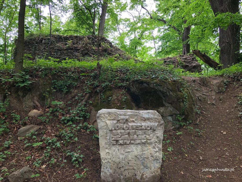 tablica opisująca ruiny zamku w Wojcieszowie