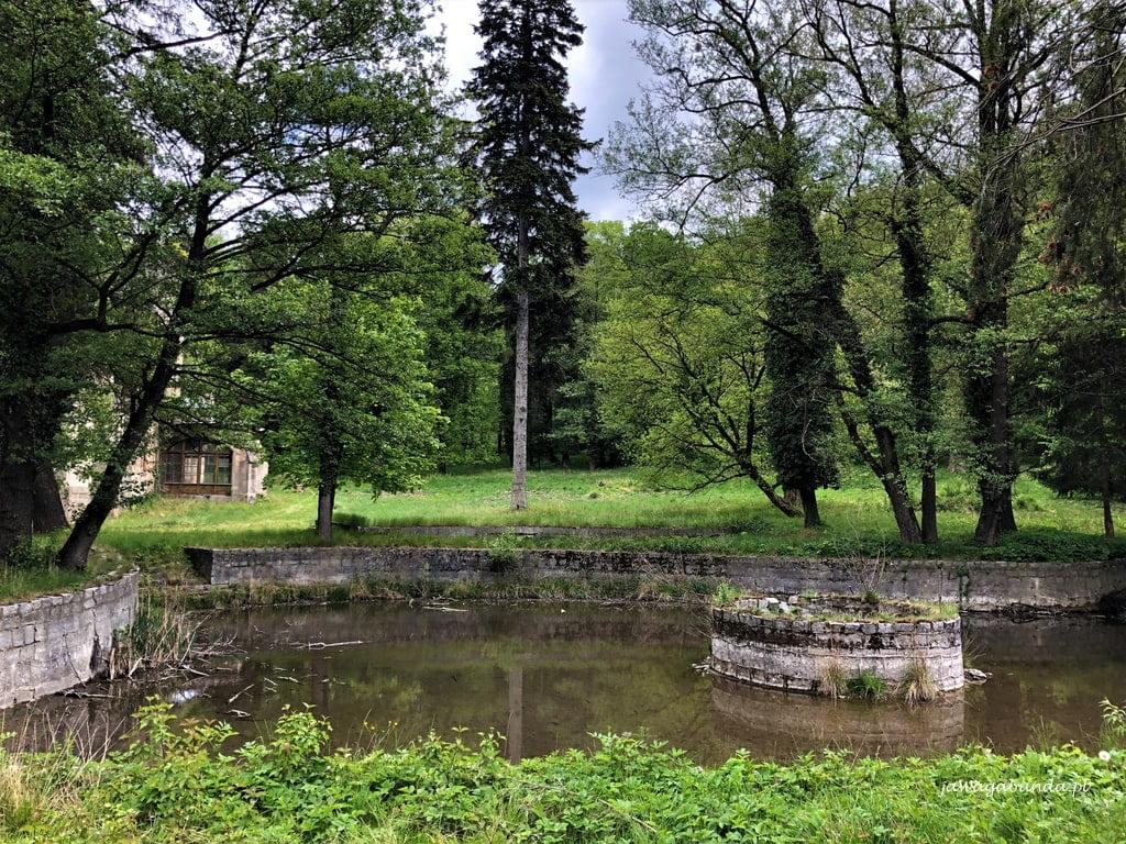 zaniedbany staw w parku przy pałacu w Wojcieszowie