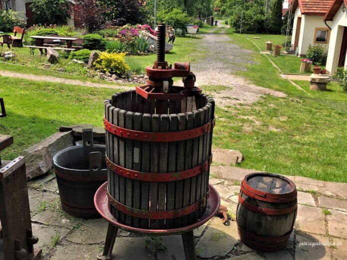 beczki do wyciskania miąższu z winogron w polskiej winnicy