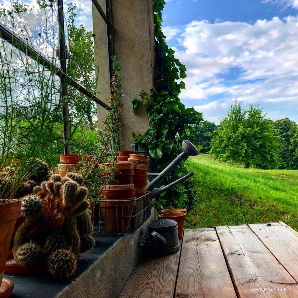 drewniany blat i widok na łąkę