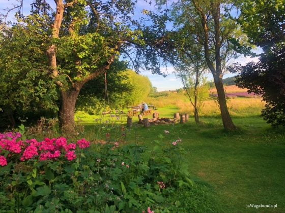 ogród z różami i miejsce na ognisko