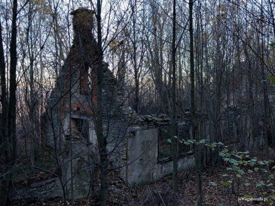 fragmenty ruin na Zamkowej Górze