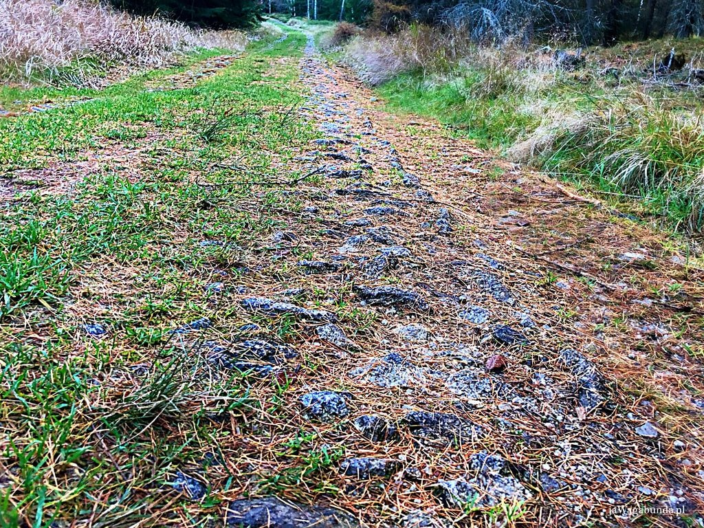 bazaltowa ścieżka w górach izerskich