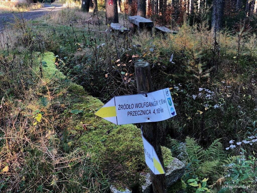 oznaczenie trasy w Górach Izerskich, żółty szlak do źródła Wolfganga