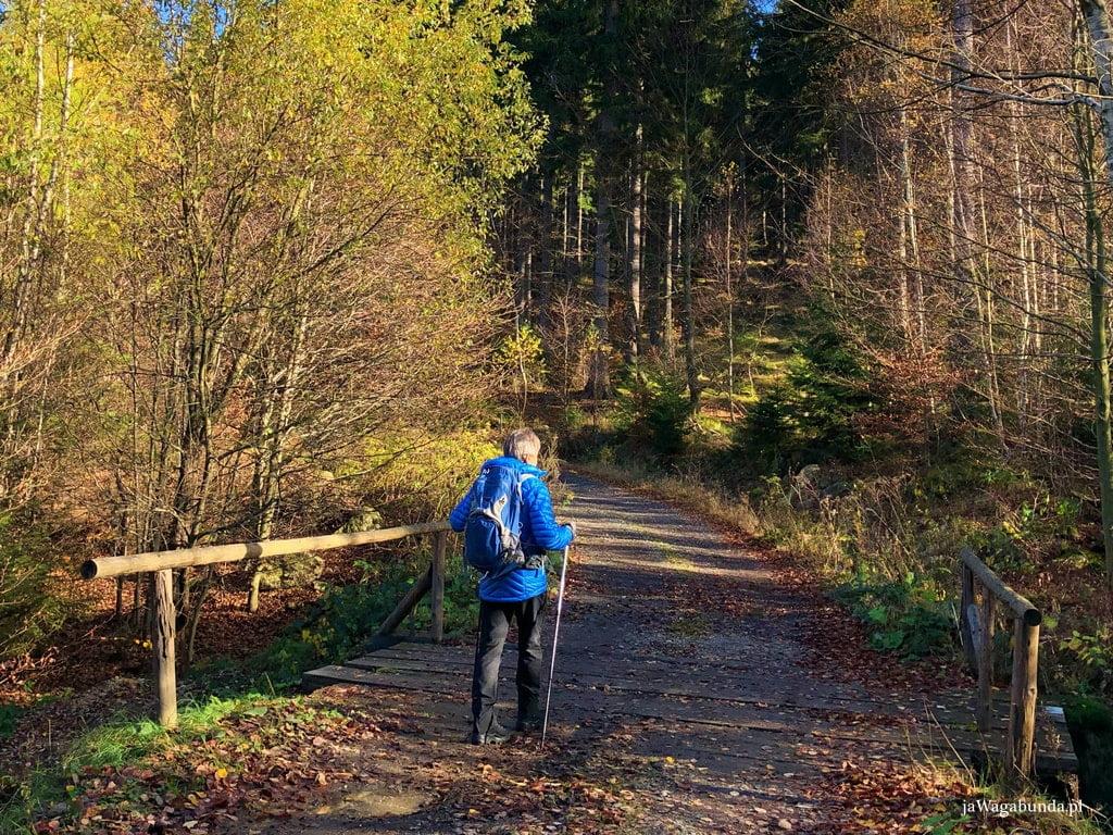 Mężczyzna z plecakiem na trasie w Górach Izerskich przechodzi przez drewniany mostek
