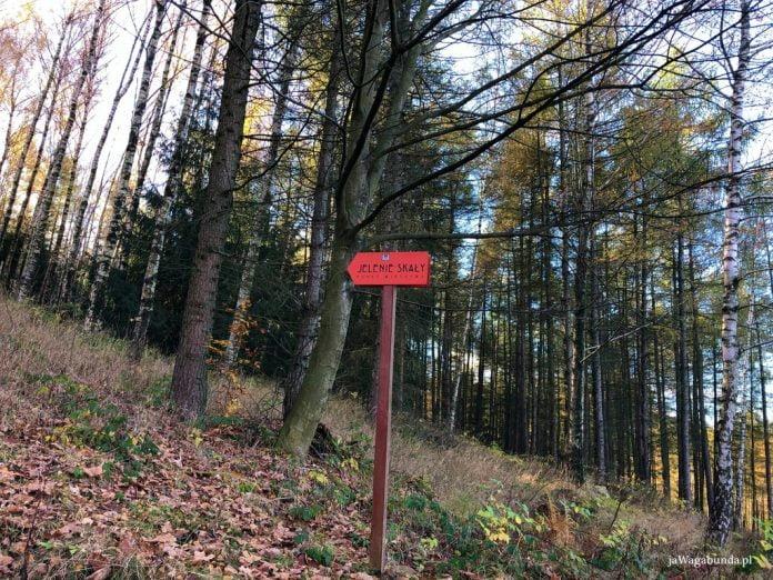 tabliczka z kierunkowskazem Jelenie Skały w Górach Izerskich