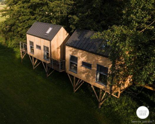 dwa domki na drzewie