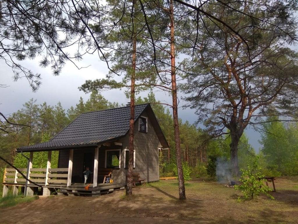 mały, szary domek w otoczeniu drzew