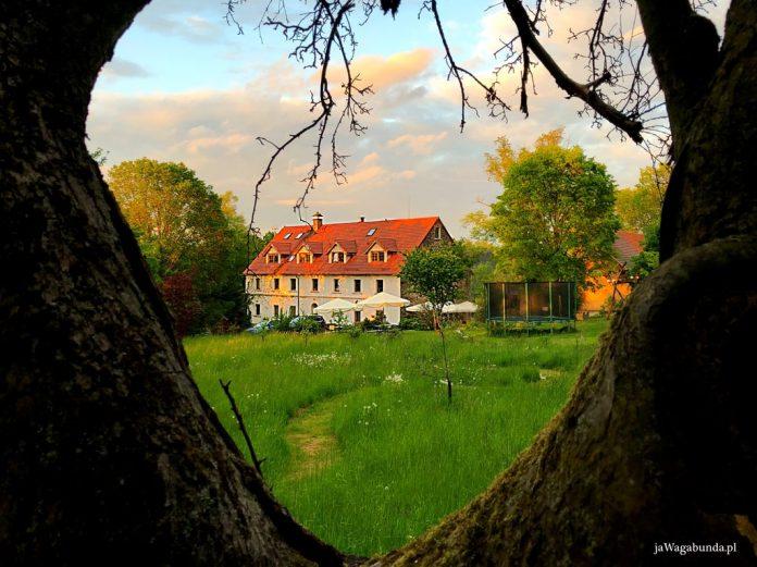 stary, odrestaurowany dom w otoczeniu zieleni oglądany z perspektywy pomiędzy konarami drzew - niczym w ramce