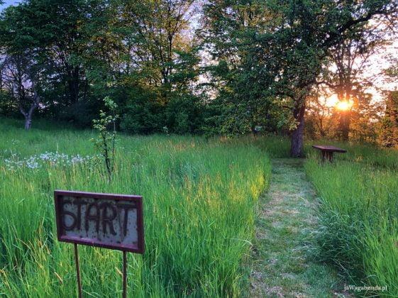 słowo start na tabliczce i labirynt w trawie
