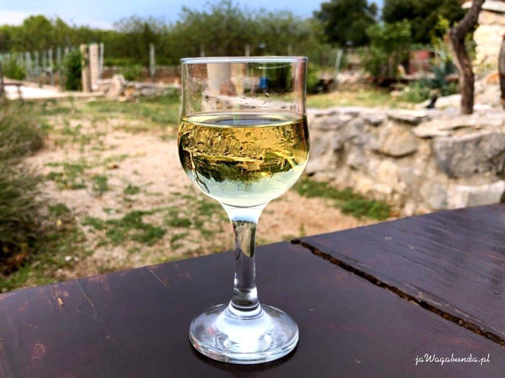 kieliszek z winem w którym odbija się winnica